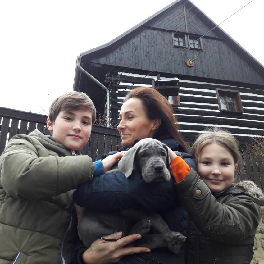 Pejsek GIRO s novou rodinou