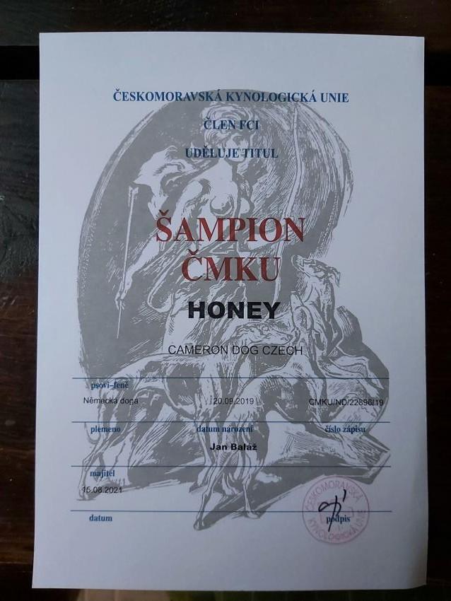 Honey Šampion ČMKU