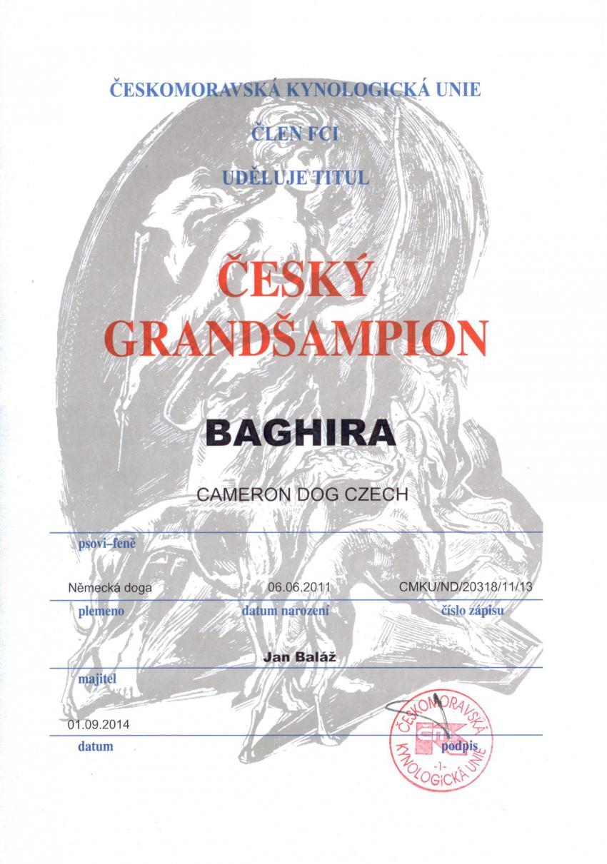 Baghira - Český Grand Šampion