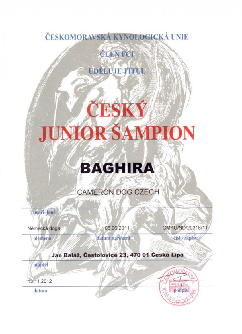 Baghira Český junior šampion 2012