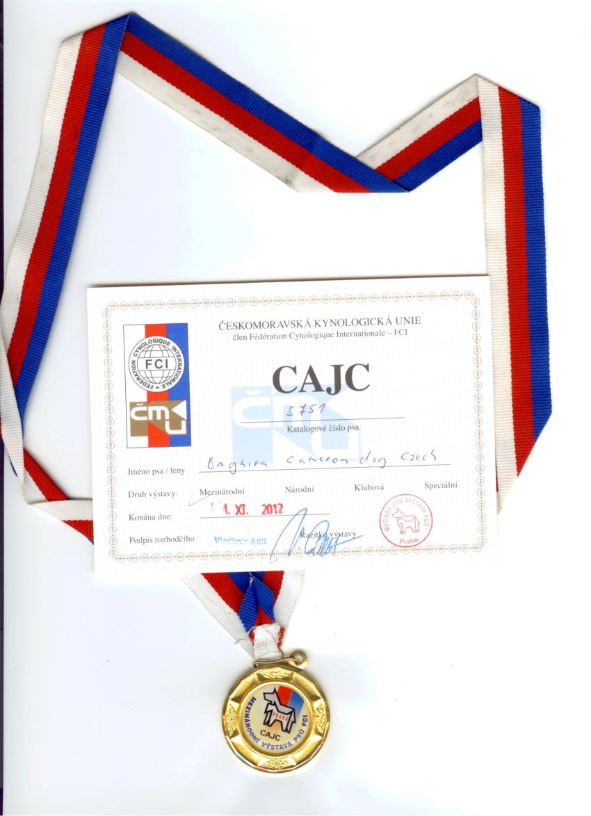 Titul CAJC 3