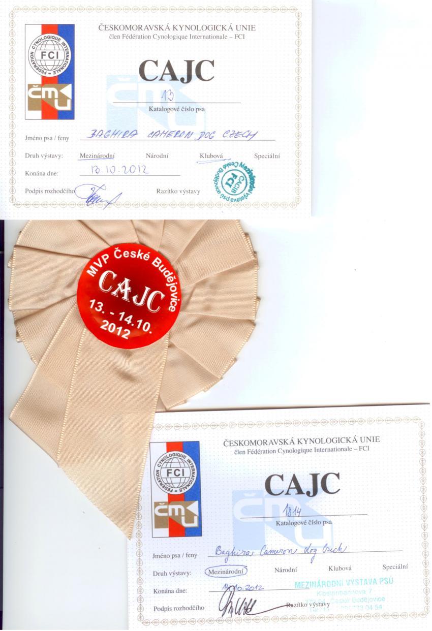 Tituly CAJC 1 a 2 Č.Budějovice