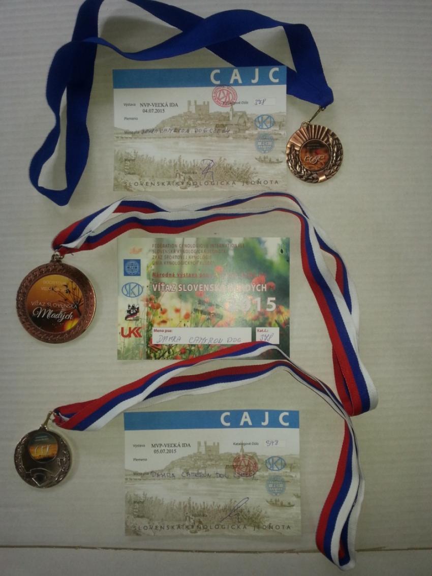 Vítěz Slovenska + 2x CAJC